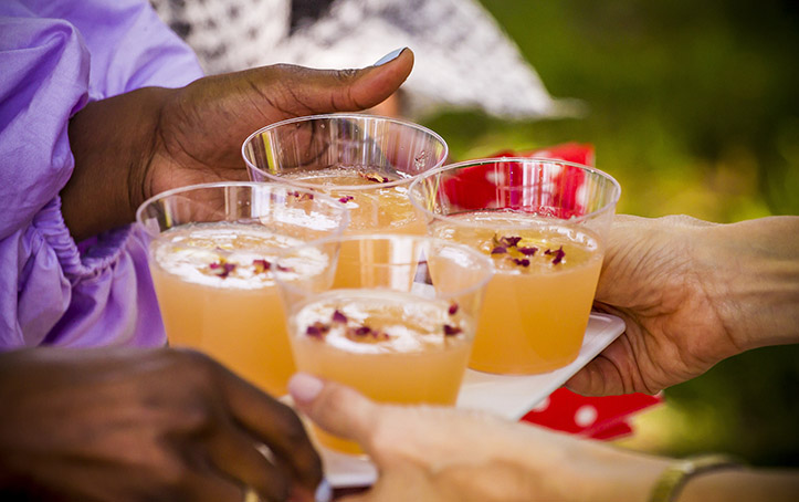 Summer Cocktails in the Park